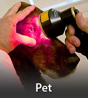 Laser Therapy for Vets